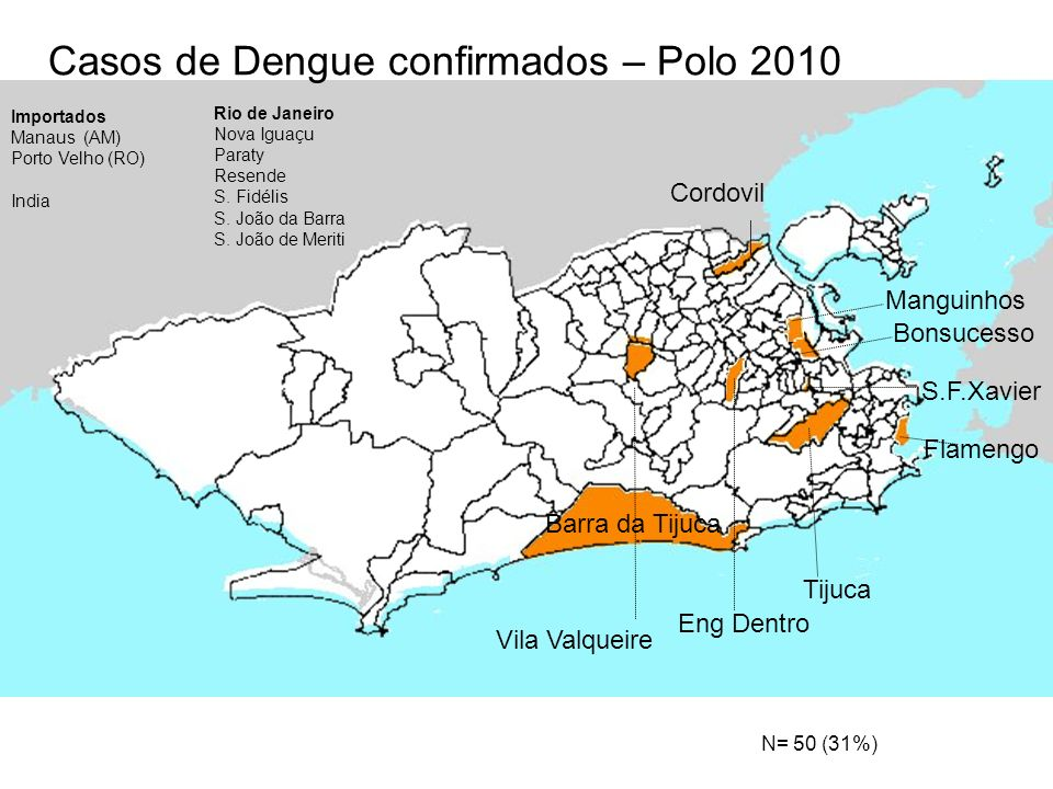 Casos de Dengue confirmados – Polo 2010
