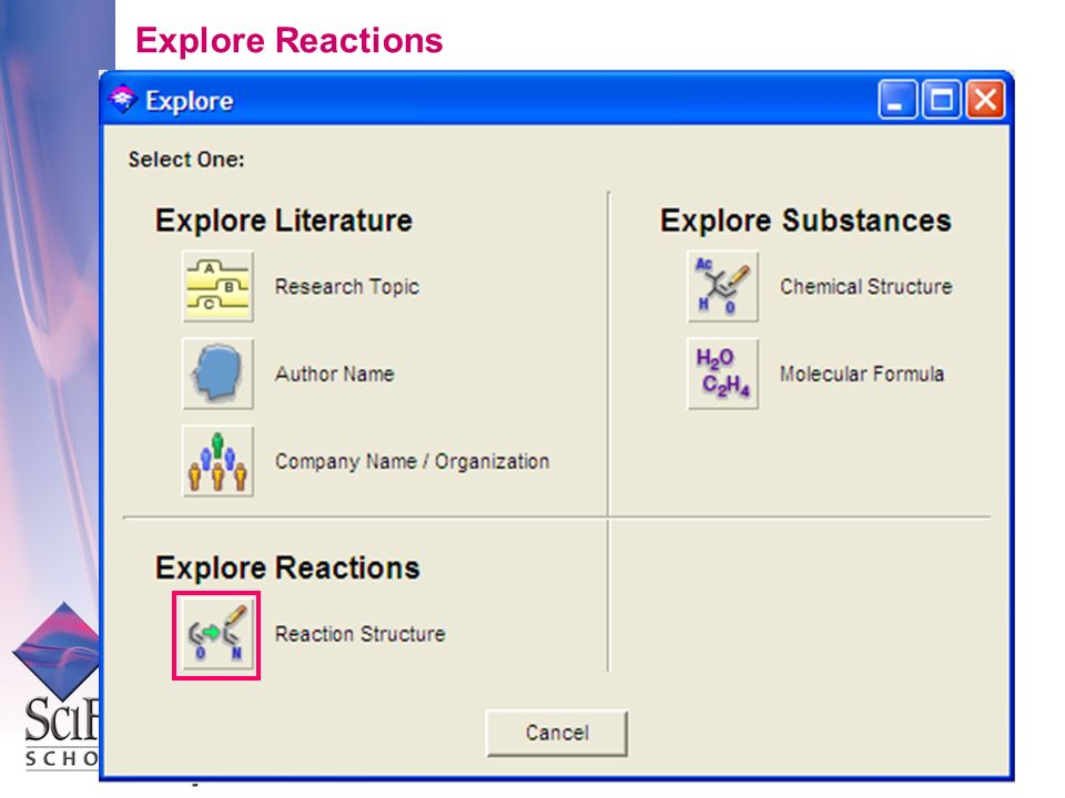 Explore Reactions