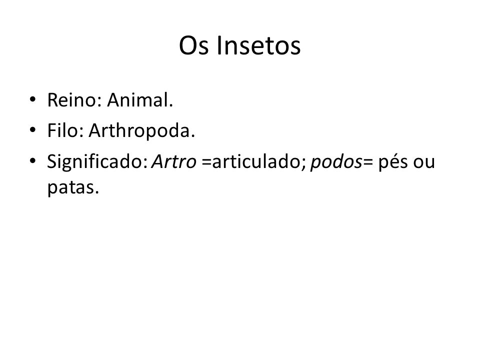 Os Insetos Reino: Animal. Filo: Arthropoda.