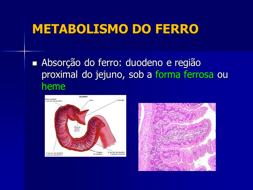 METABOLISMO DO FERRO Absorção do ferro: duodeno e região proximal do jejuno, sob a forma ferrosa ou heme.