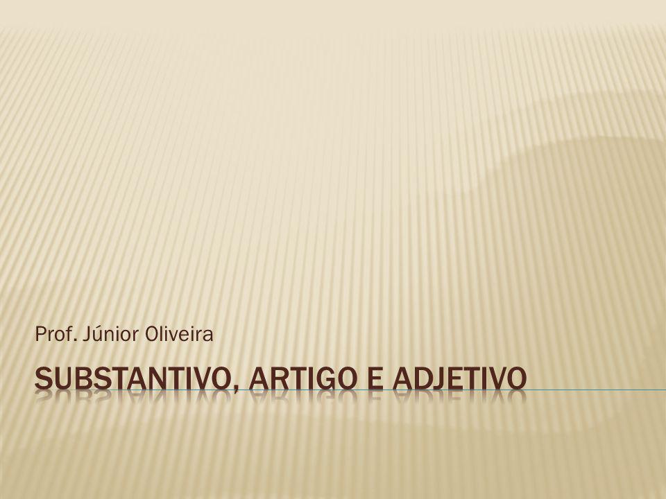 Prof Júnior Oliveira: Substantivo, Artigo E Adjetivo