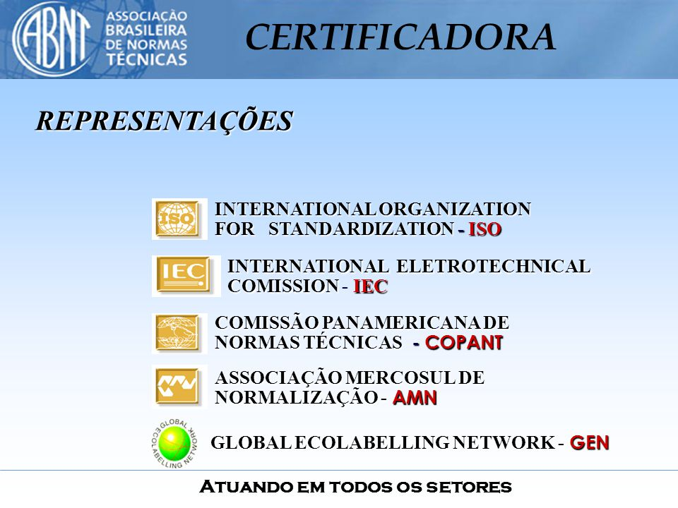 REPRESENTAÇÕES INTERNATIONAL ORGANIZATION FOR STANDARDIZATION - ISO