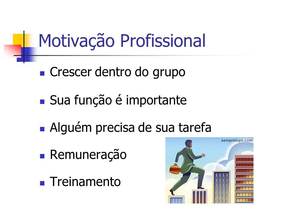Organização Cooperação E Motivação Ppt Carregar
