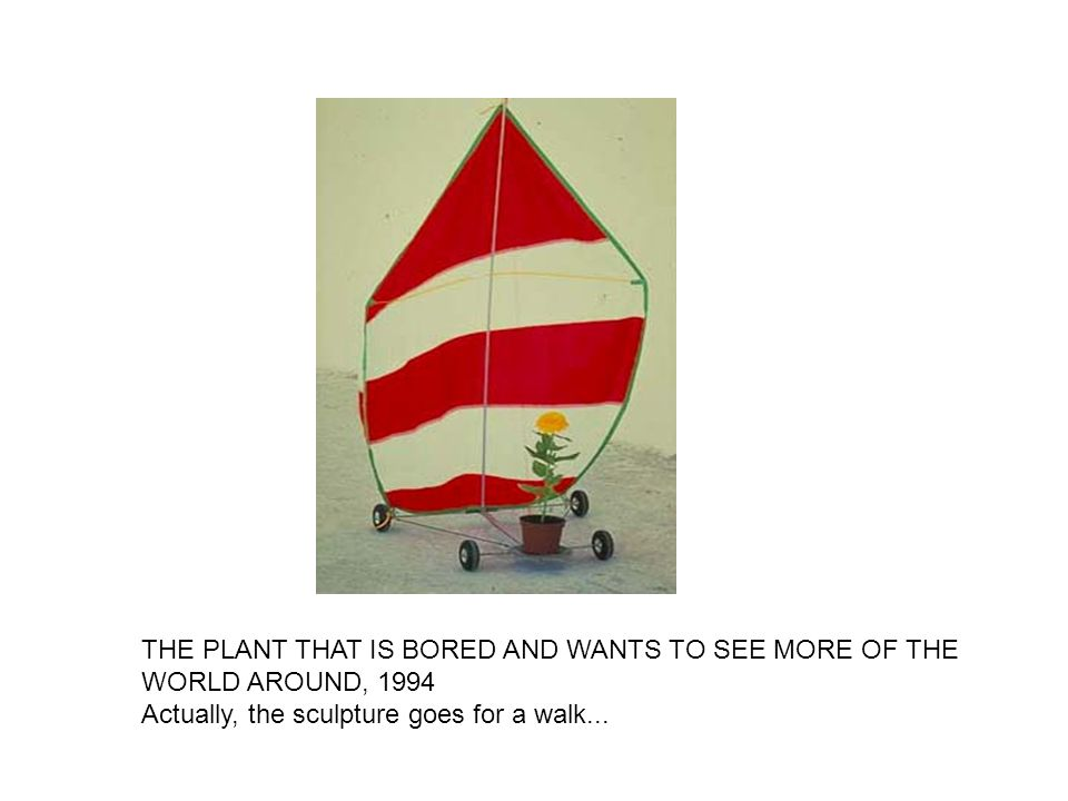 THE PLANT THAT IS BORED AND WANTS TO SEE MORE OF THE WORLD AROUND, 1994 Actually, the sculpture goes for a walk...