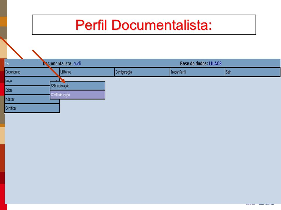 Perfil Documentalista: