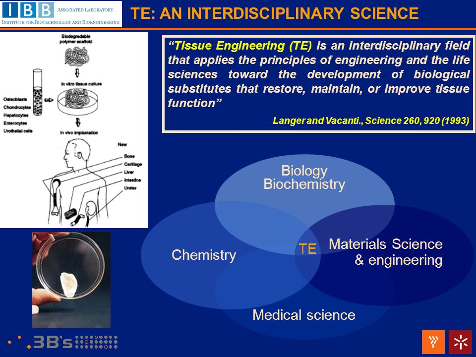 TE: AN INTERDISCIPLINARY SCIENCE