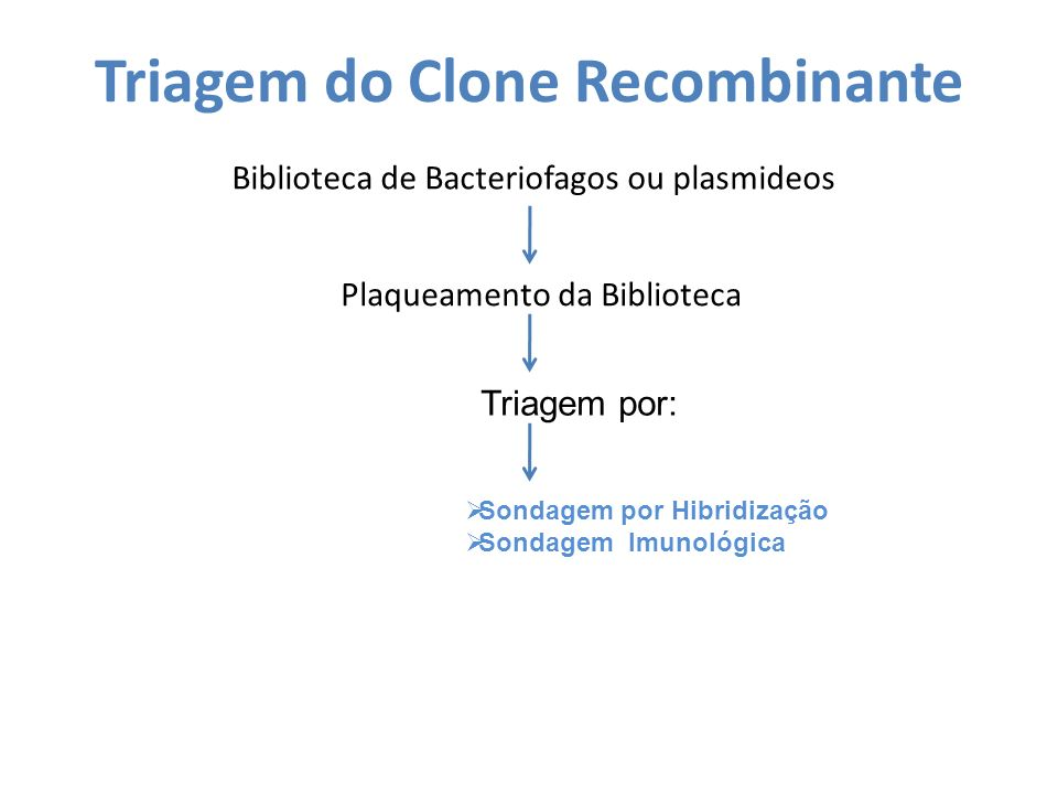 Triagem do Clone Recombinante