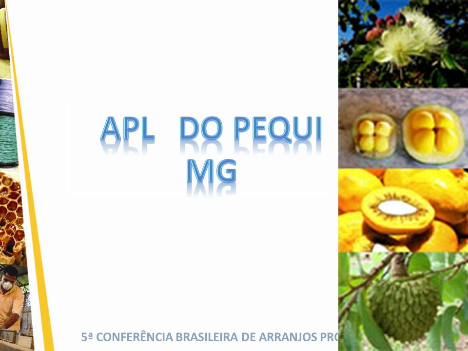 APL DO PEQUI MG