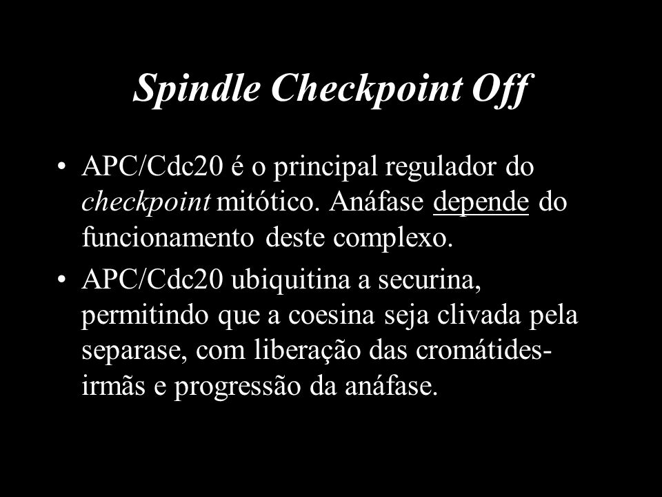 Spindle Checkpoint Off