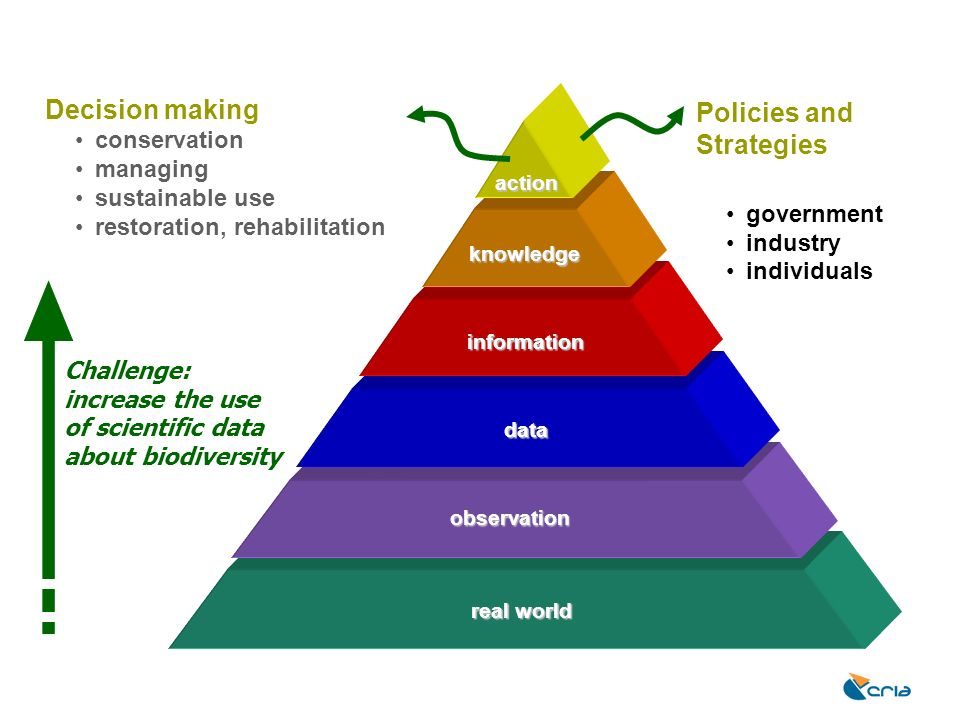 Decision making Policies and Strategies conservation managing