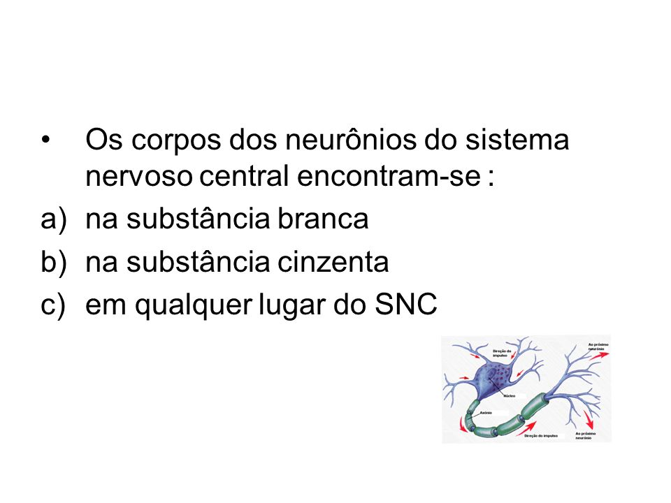 Os corpos dos neurônios do sistema nervoso central encontram-se :
