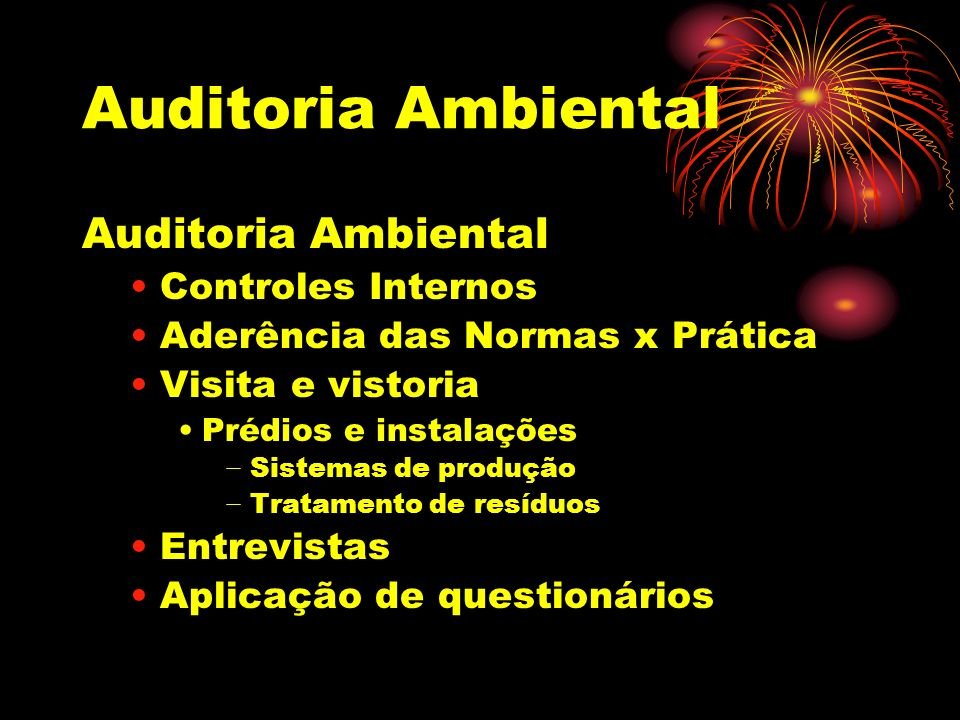 Auditoria Ambiental Auditoria Ambiental Controles Internos