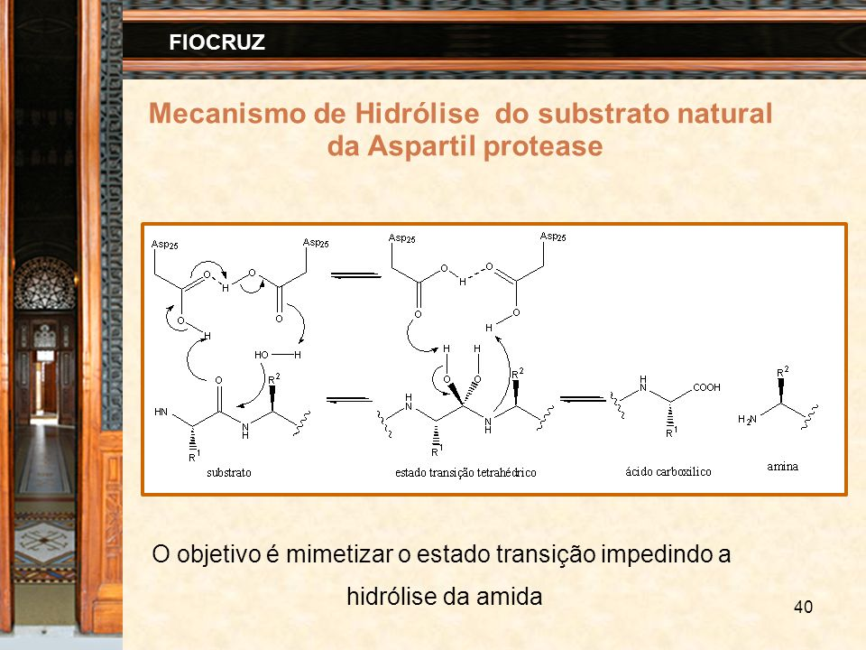 Mecanismo de Hidrólise do substrato natural
