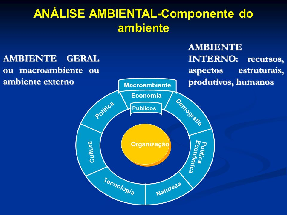 ANÁLISE AMBIENTAL-Componente do ambiente