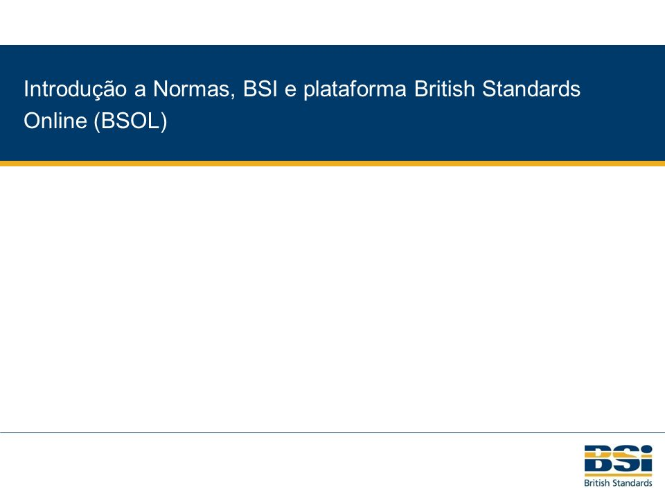 BSI British Standards Strategic Plan 2008-2010