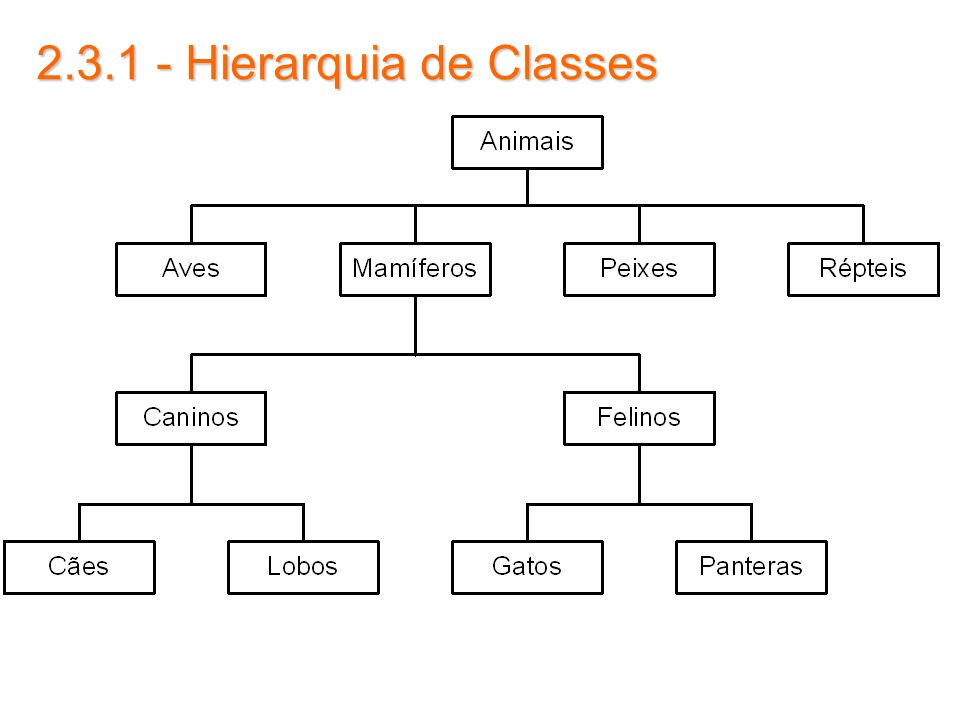2.3.1 - Hierarquia de Classes