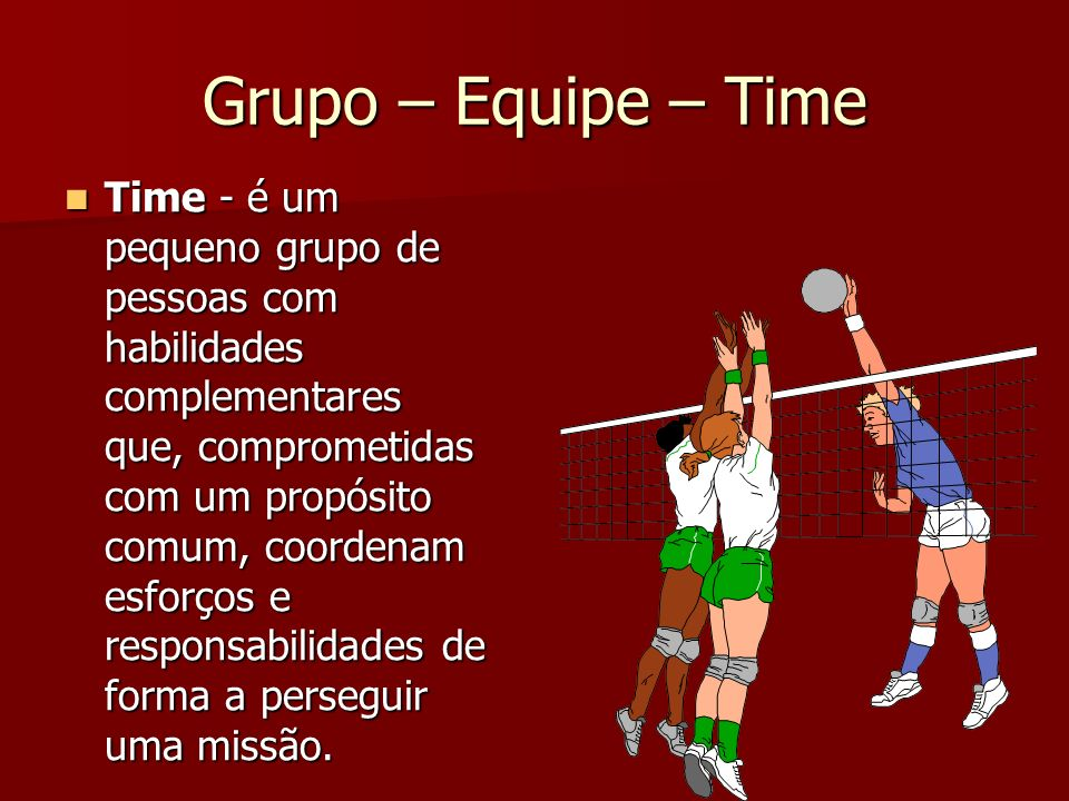 Grupo – Equipe – Time