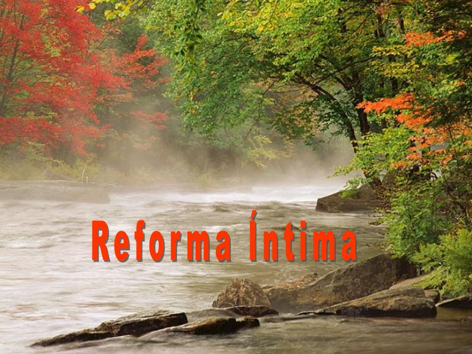 Ppt Carregar: Reforma Íntima.
