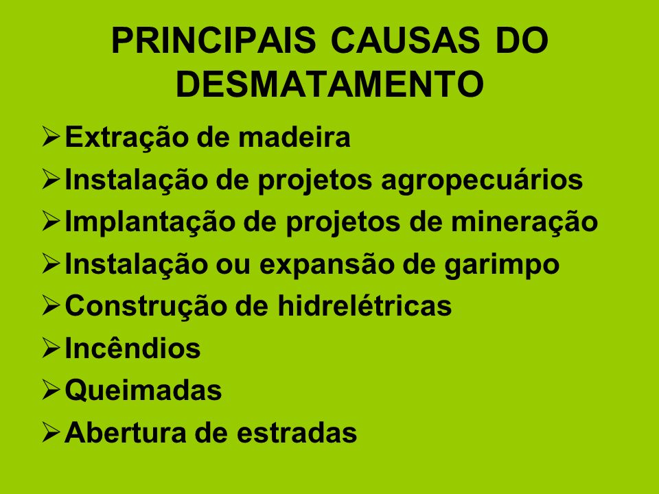 PRINCIPAIS CAUSAS DO DESMATAMENTO