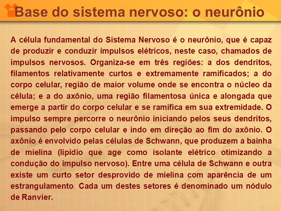 Base do sistema nervoso: o neurônio