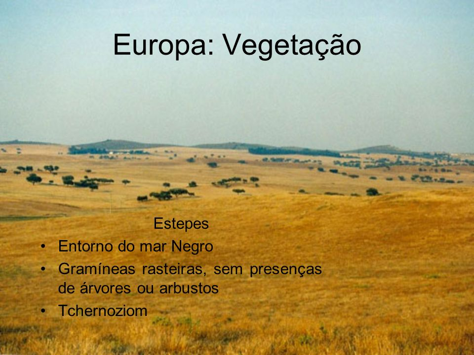 Europa: Vegetação Estepes Entorno do mar Negro