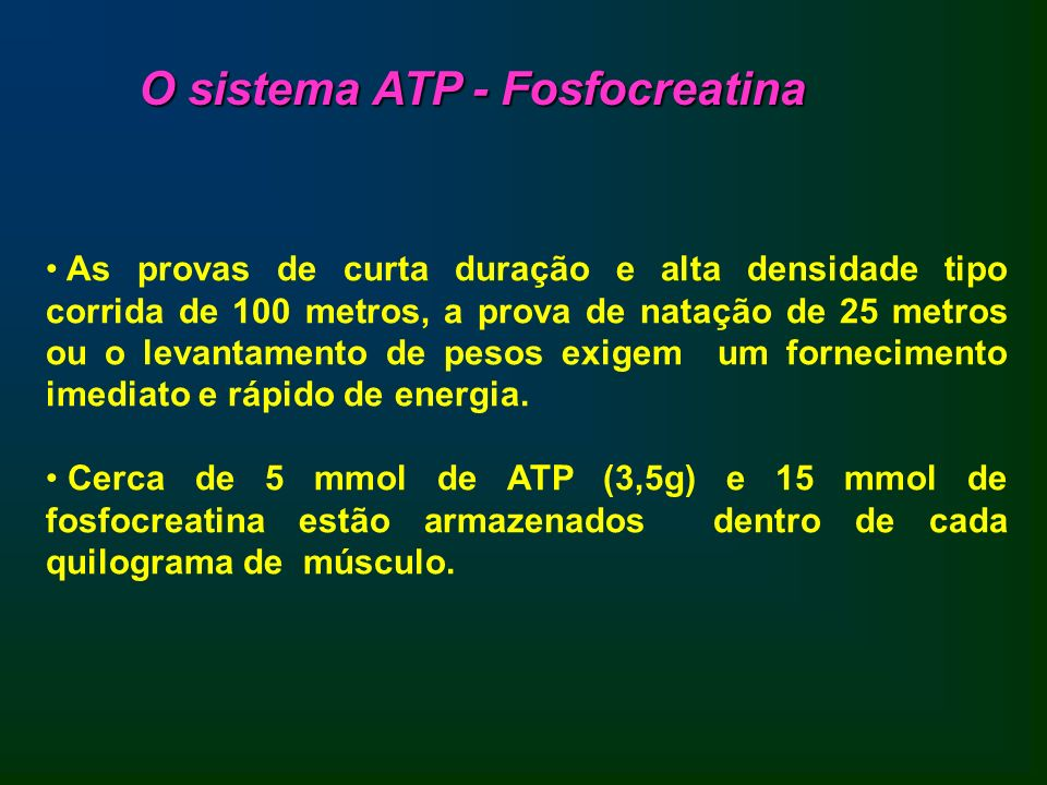 O sistema ATP - Fosfocreatina
