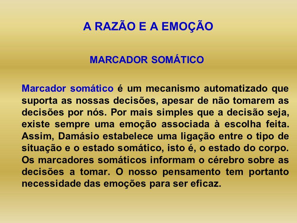 AS EMOÇÕES. - ppt video online carregar 30f388c379200