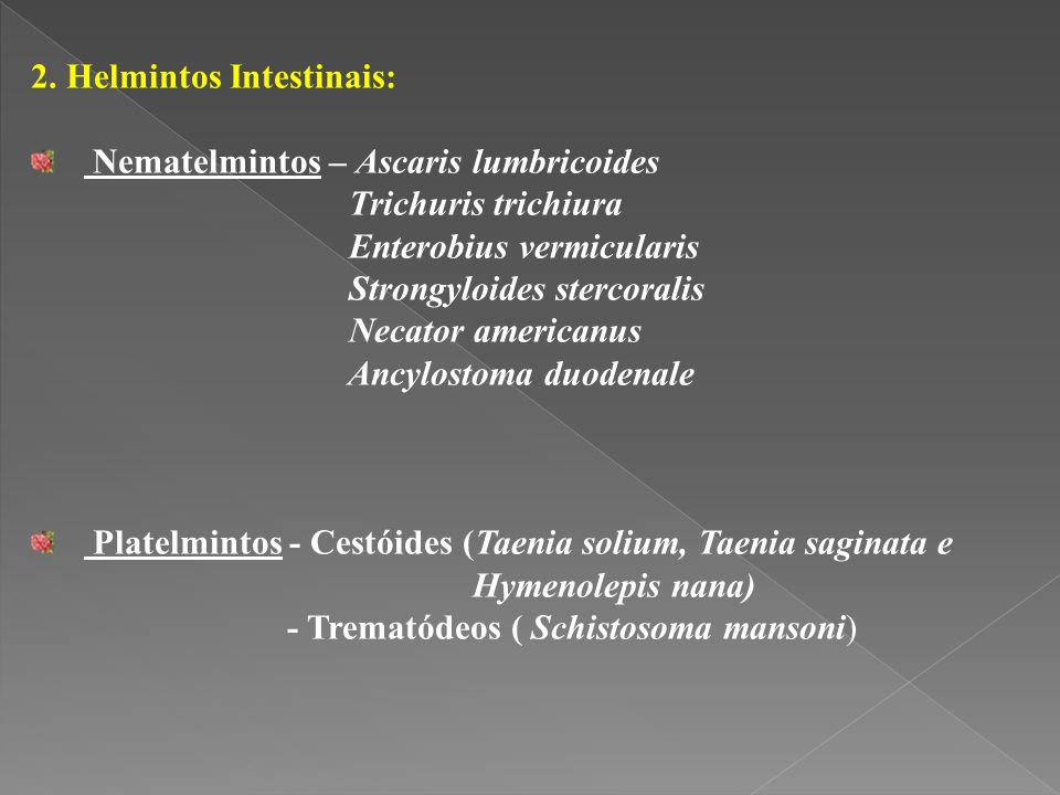 2. Helmintos Intestinais: