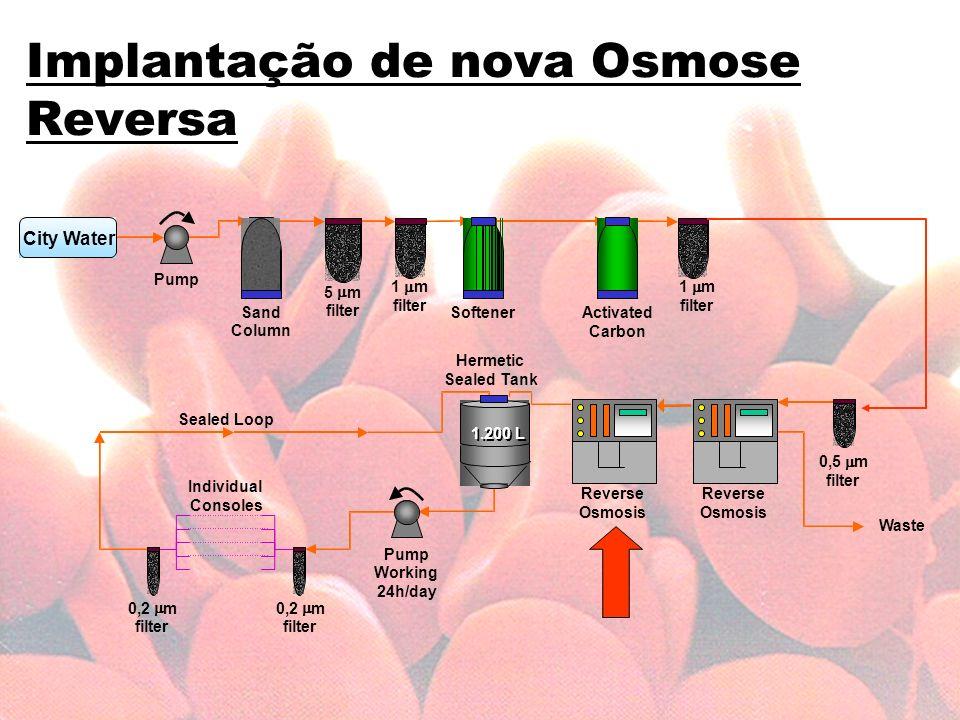 Anemia em dilise necessidade de novos rumos ppt carregar 74 implantao ccuart Choice Image