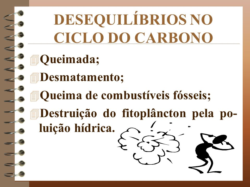 DESEQUILÍBRIOS NO CICLO DO CARBONO