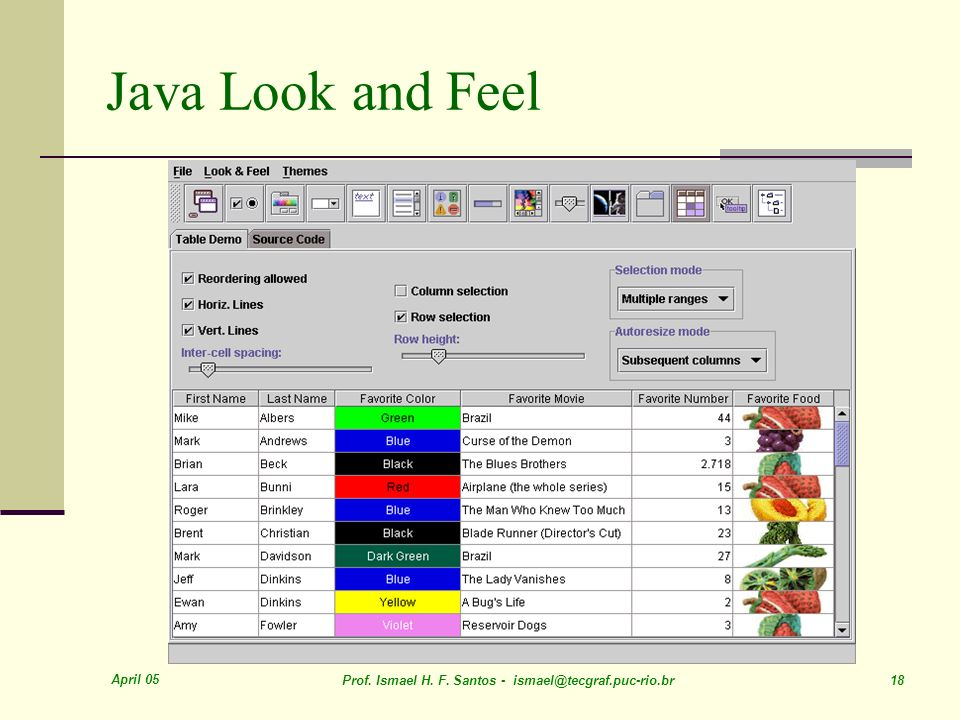 Java Look and Feel April 05