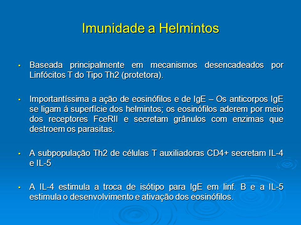 anticorpi de helmint paraziți pe tratamentul capului