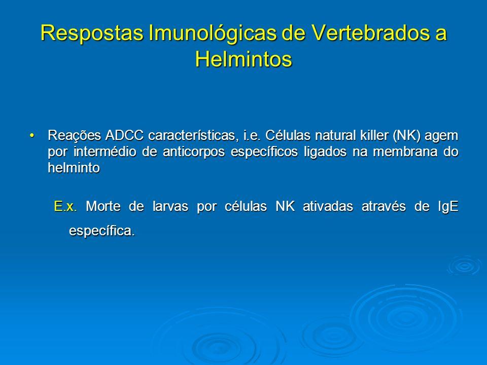 anticorpi de helmint)