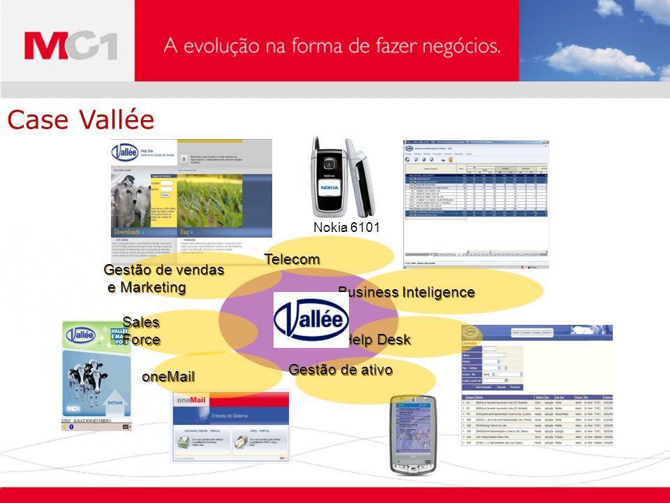 Case Vallée Telecom Gestão de vendas e Marketing Business Inteligence