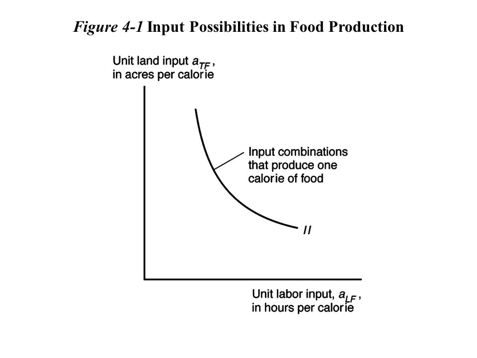 Figure 4-1 Input Possibilities in Food Production
