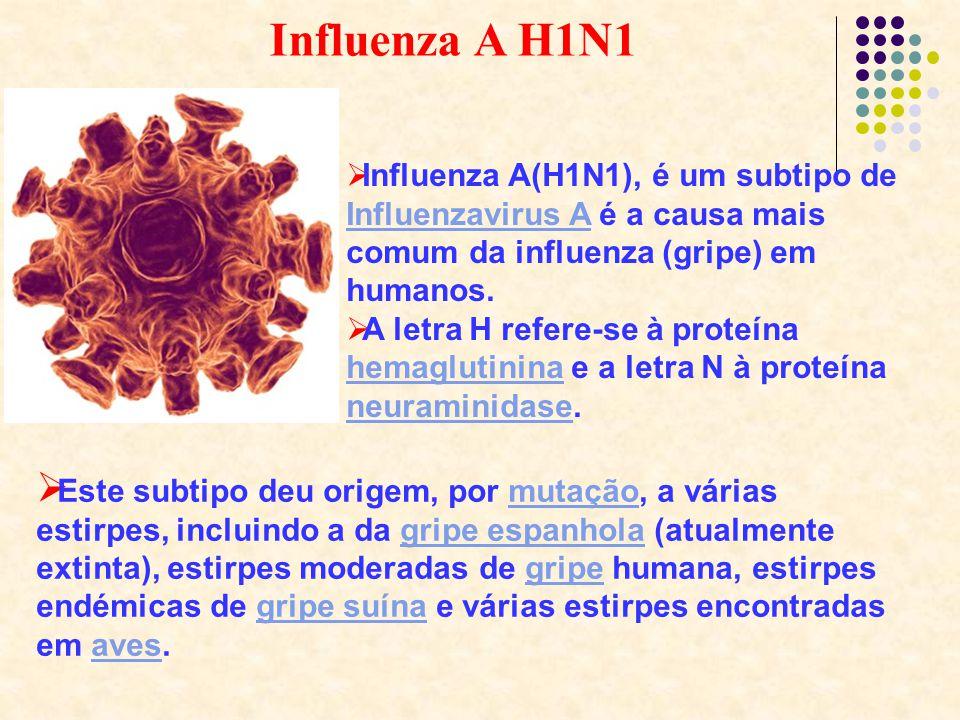 Influenza A H1N1 Influenza A(H1N1), é um subtipo de ...