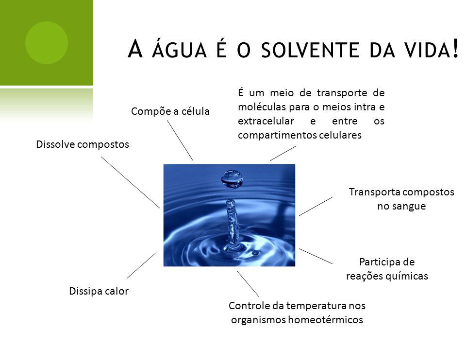 7117676474f A água é o solvente da vida!