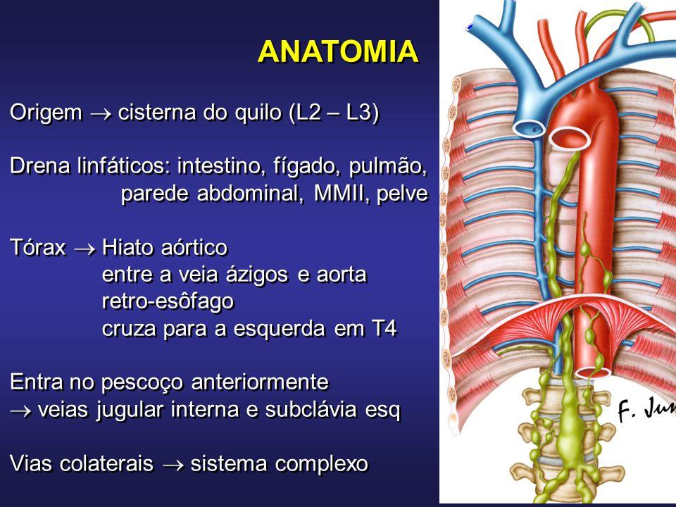 ATUALIZAÇÃO EM PNEUMOLOGIA Pleura - InCor - FMUSP e FM Jundiaí - ppt ...