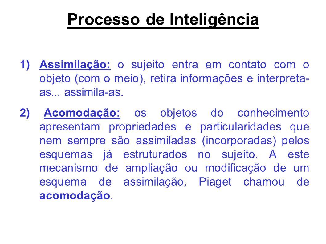 a86d5b973c6 1.Contribuições de Piaget para a educação. - ppt video online carregar
