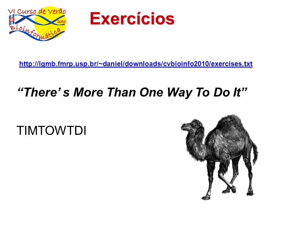 Exercícios There' s More Than One Way To Do It TIMTOWTDI