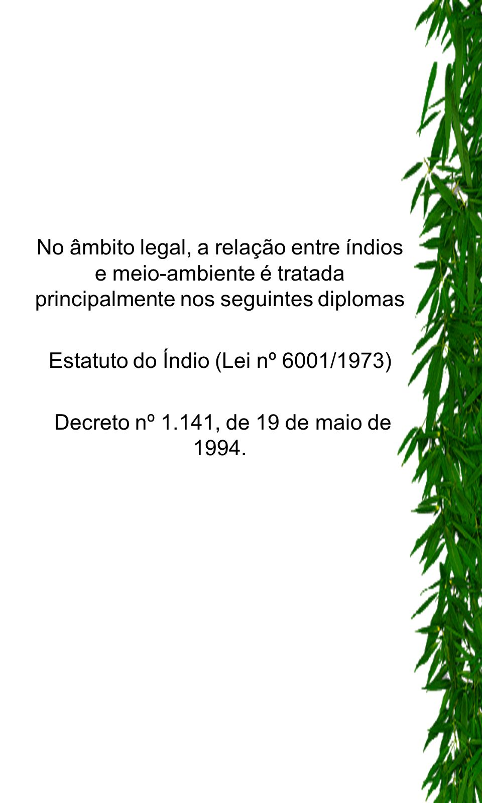 Estatuto do Índio (Lei nº 6001/1973)