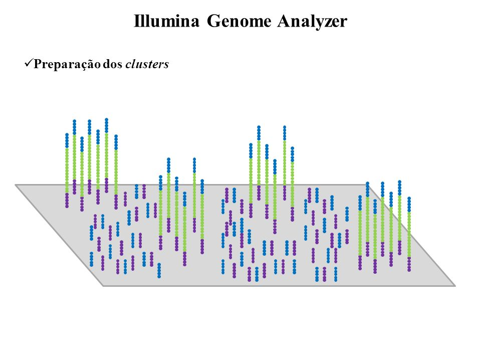 Illumina Genome Analyzer
