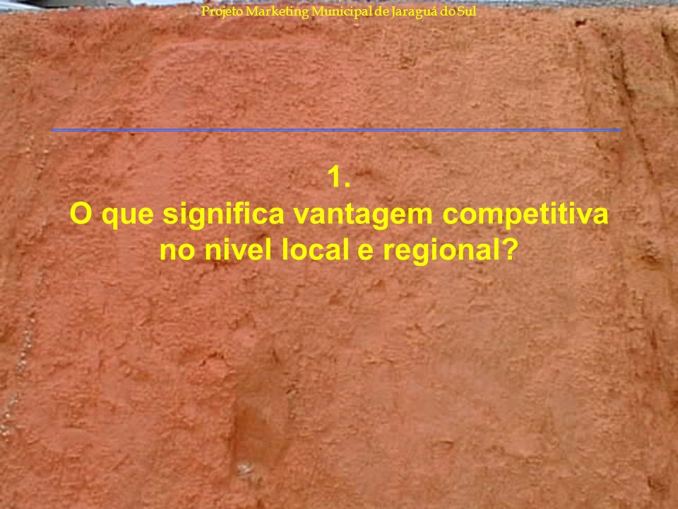 1. O que significa vantagem competitiva no nivel local e regional