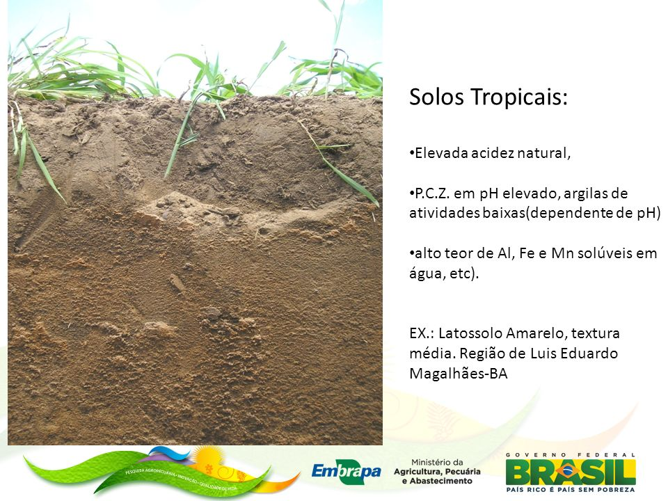 Solos Tropicais: Elevada acidez natural,