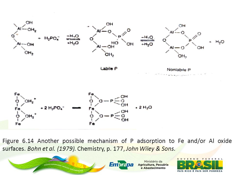 Figure 6.14 Another possible mechanism of P adsorption to Fe and/or Al oxide surfaces.