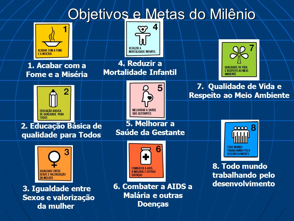 Objetivos e Metas do Milênio