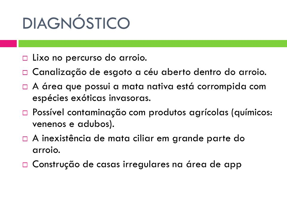 DIAGNÓSTICO Lixo no percurso do arroio.