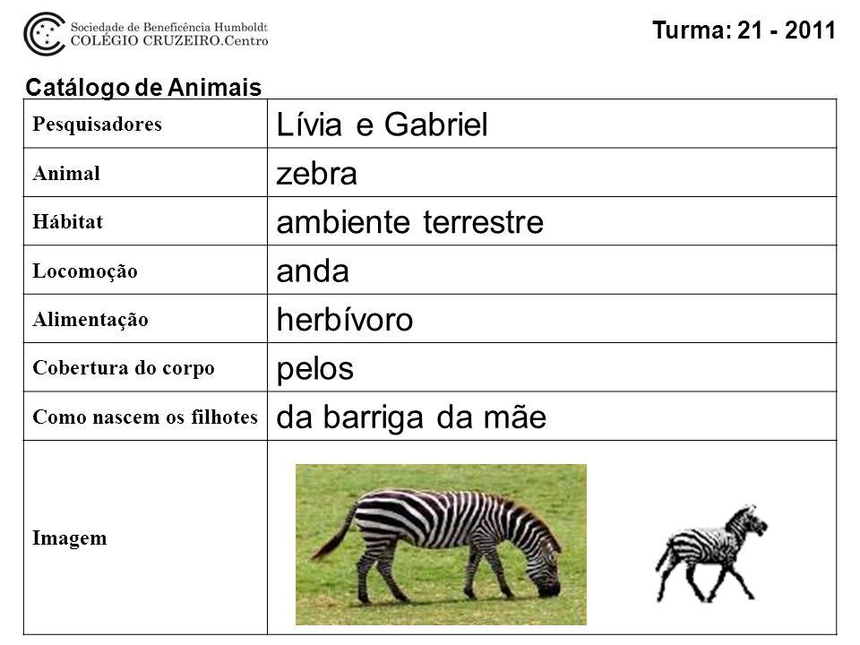 Escolha um animal e preencha o pr ximo slide ppt carregar for Modo 10 catalogo