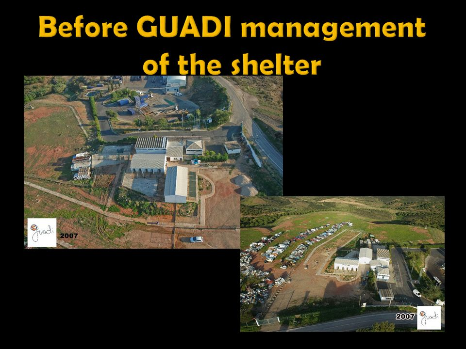 Before GUADI management of the shelter