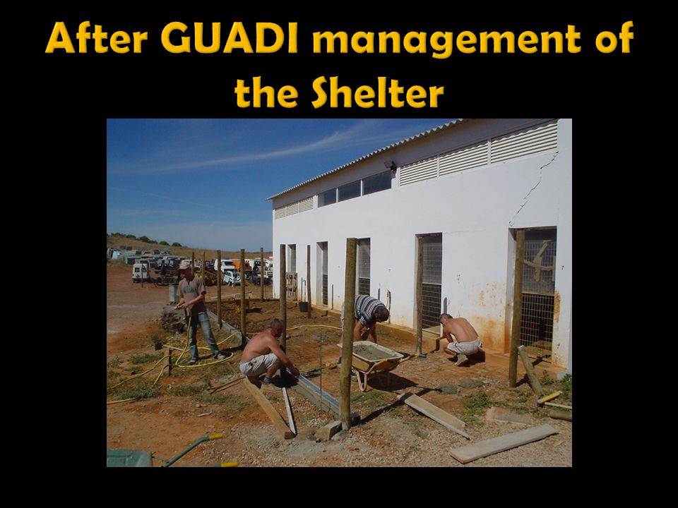 After GUADI management of the Shelter